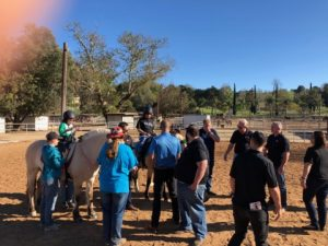 Community, Pacwestpc, Pacific Western Painting and Construction, Team, Expert, HOA
