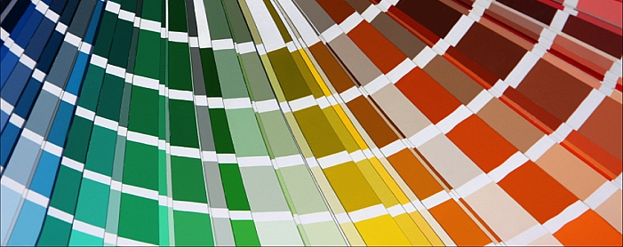 Color Consultant, Design Services and COnstruction
